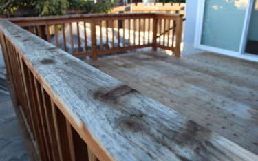 What Is Dry Rot, and How Can You Protect Your Central Coast Home?
